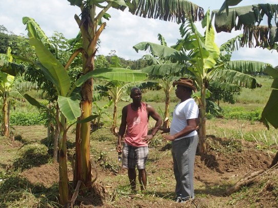 With Mr. Patrick Sawyer, discussing crops